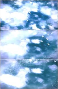蓝天白云高空中大雁仙鹤小鸟群飞行视频
