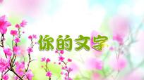 粉红色的花视频