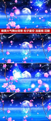 唯美舞台背景粒子星空流星蝴蝶桃花花瓣飞舞