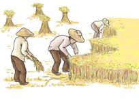 农民收稻子插画