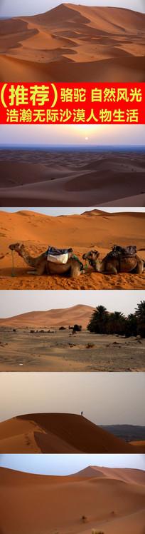 浩瀚无际沙漠人物生活高清实拍