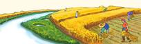 丰收割麦收谷子插画