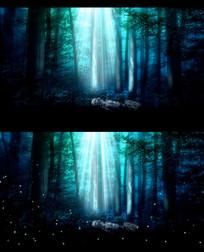 唯美仙境树林月光幽暗视频背景