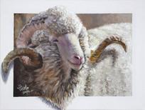 原创裸眼3D立体绵羊油画装饰画