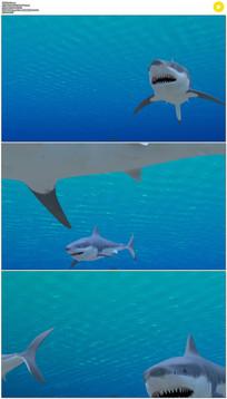 海底大白鲨三维动画视频素材