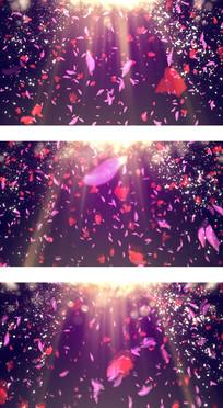 告白环节玫瑰花瓣飘落背景视频