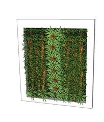 拼花图纹植物墙