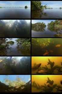 航拍湖面风景视频