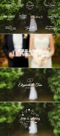 婚礼主题人名条标题文字动画AE模板