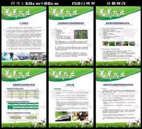 绿色农业公司展板