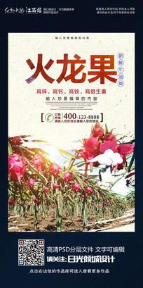 时尚大气火龙果宣传海报设计
