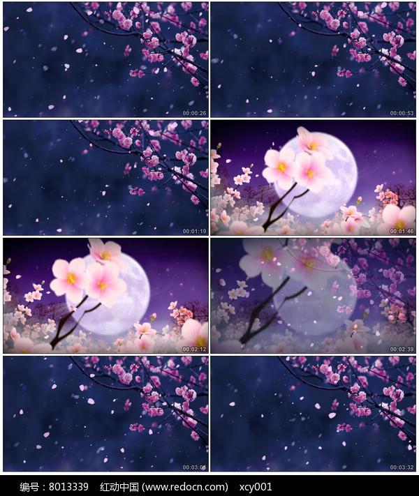 唯美抒情夜色桃花视频素材图片