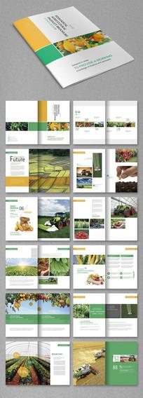 大气农产品宣传册