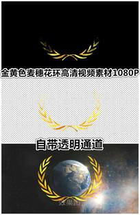 纯金色立体花环联合国徽章视频