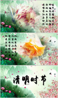 清明水墨花卉展示视频