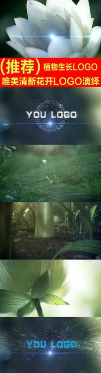 清新花开植物生长logo演绎视频