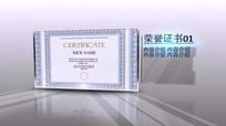 企业个人获奖证书发展历程模板