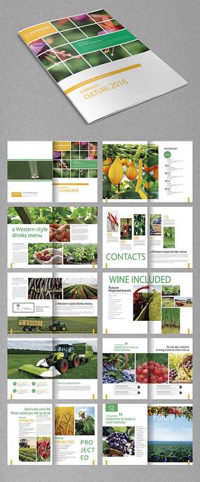 个性农产品画册
