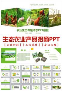 精美农业生态猪鸡牛羊养殖ppt