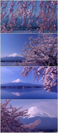 日本富士山昼夜唯美风光视频 mov