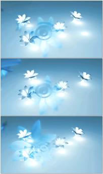 水晶花朵白银花朵动态背景视频