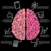 人脑解剖图矢量素材