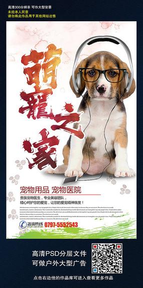 时尚个性宠物海报设计