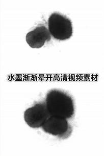 中国风黑色墨水滴下墨汁渐渐晕开视频