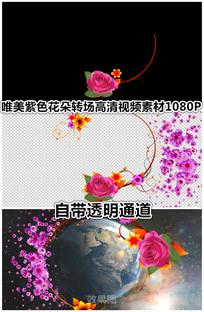 紫色菊花玫瑰花朵飘动转场视频带通道