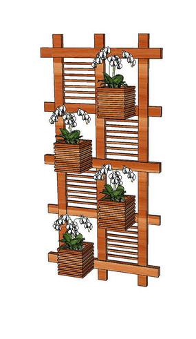 木质蝴蝶兰盆栽架