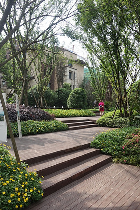 庭院木质铺地