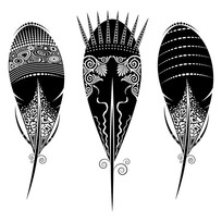 黑色羽毛矢量插图设计