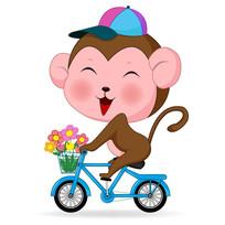 小猴子骑车插画