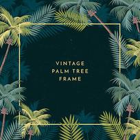夏季夏威夷热带棕榈树素材