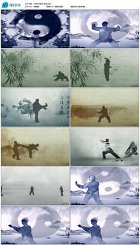 赵文卓少年中国水墨视频