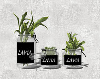 玻璃罐子绿色花瓶SU