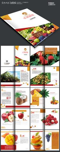 高档新鲜水果画册版式设计