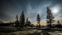 大树顶上的星空银河奇观视频素材