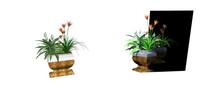 室内盆栽su模型3d模型