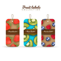 水果标签吊牌设计模板 AI
