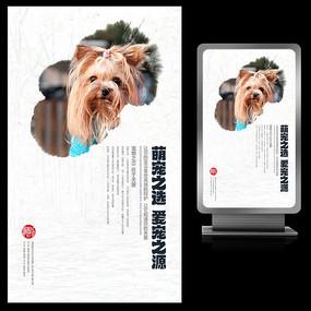 萌宠之选爱宠之源宠物店宣传海报