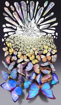 钻石蝴蝶渐变矛盾空间图案设计