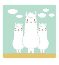 可爱的白色羊驼卡通矢量插画