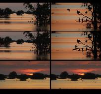 唯美湖面夕阳西下视频