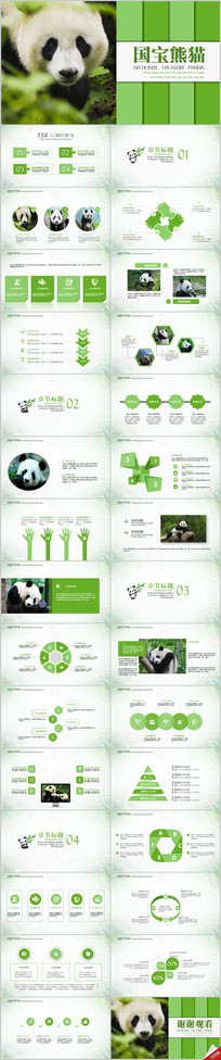 国宝大熊猫吃竹子动物保护ppt动态模板