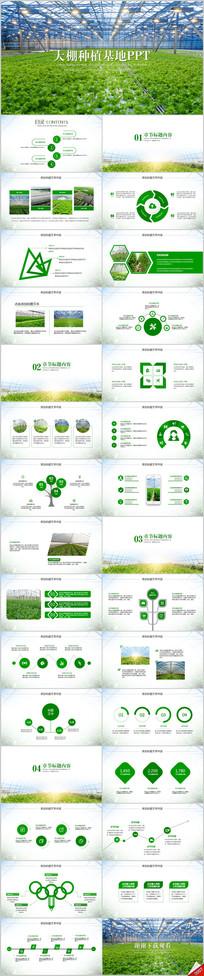 原生态大棚蔬菜种植基地ppt动态模板 pptx