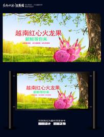 越南红心火龙果海报展板