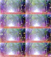 枫叶飘落树林舞台背景视频