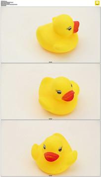 可爱的小黄鸭实拍视频素材