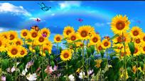 蓝天白云向日葵蝴蝶飞视频素材